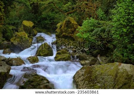 Fjordland National Park, New Zealand - stock photo