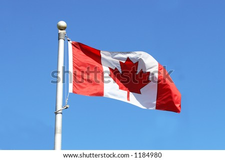Flag of Canada waving in the wind with a blue sky - stock photo