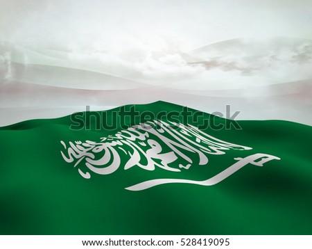 outline for saudi arabia report