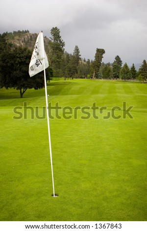 flag on green at golf course,