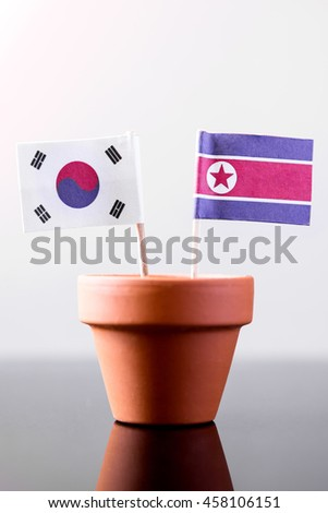 flags of southkorea and northkorea in a plant pot