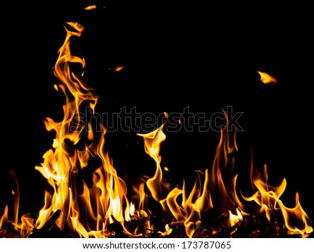 flame fire on black background - stock photo