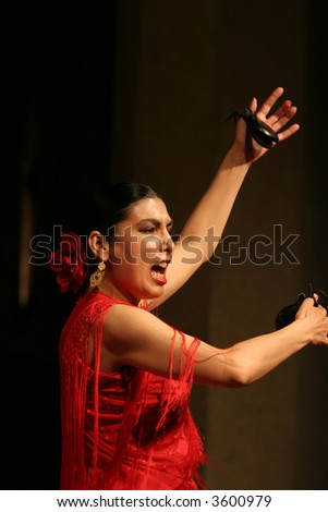 Flamenko dancer - stock photo