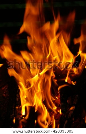 Flames burning in the bonfire - stock photo
