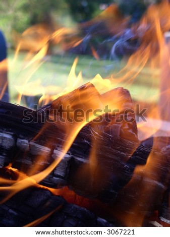 flames entwining around burning logs flames on wood in a backyard - macro - stock photo
