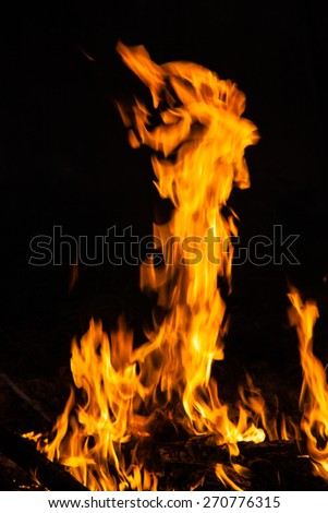 flames from a fire on a black background. picture. - stock photo