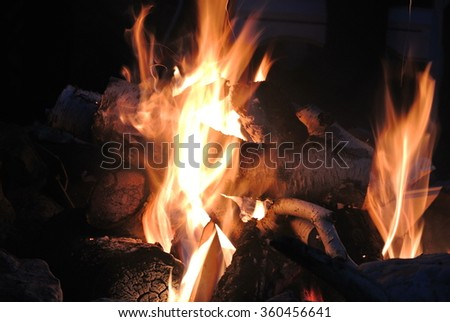 Flames of Bonfire