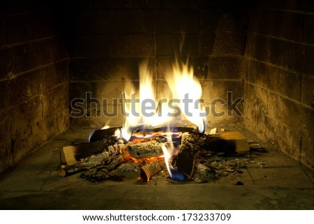 Flames of fire in a fireplace. Realistic fire. - stock photo