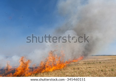 Flames of fire on agricultural lands