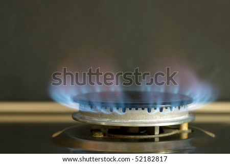 Flames of gas stove black background - stock photo