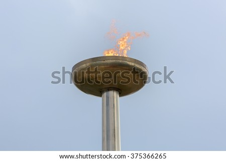 Flaming torch.  - stock photo