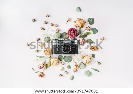 Flat lay. Vintage retro photo camera, beige roses and green leaves, top view - stock photo