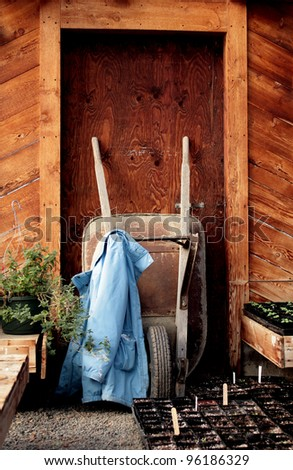 flats of seedlings in the foreground, faded and weathered blue jacket hanging from a rusted and worn wheelbarrow leaning against rustic wooden door