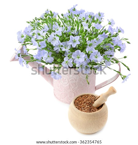 flax seeds and flowers isolated on white background - stock photo