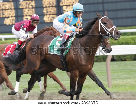 Fleet Indian, with Jose Santos Up, Wins the 2006 Personal Ensign Stakes at Saratoga Race Course - stock photo