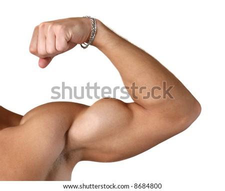 Flexed biceps isolated on white - stock photo