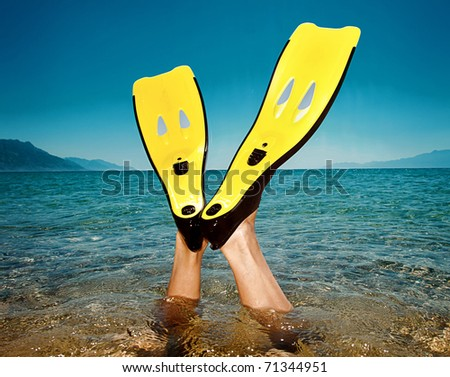 flippers - stock photo