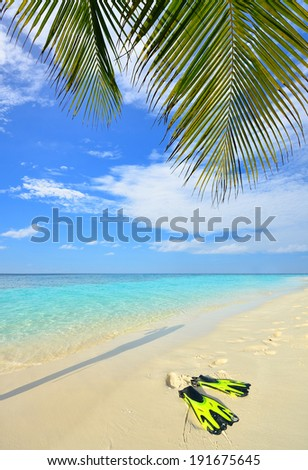 Flippers on tropical sandy beach -- Tropical vacation concept  - stock photo