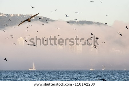 Flock of birds flying in front of city skyline covered by fog - stock photo