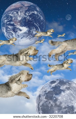 Flock of dogs flying through imaginary atmosphere - stock photo