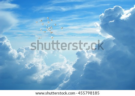 Flock of doves in flight against blue cloudy sky representing angels carrying the soul to Heaven - stock photo