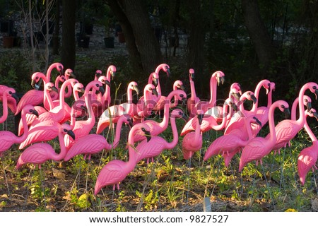 Flock of very pink plastic flamingos in the forest. - stock photo