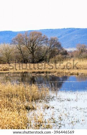 Flood basin at Lake Balaton, Hungary - stock photo