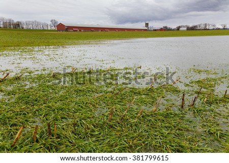 Flooded field with chicken house on farm after winter storm - stock photo