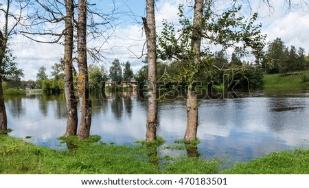 Flooding in rural areas. Panorama of village landscape with views of the river and the trees in the water. Flooding of the river in the countryside.