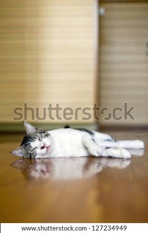 Floor heating - stock photo