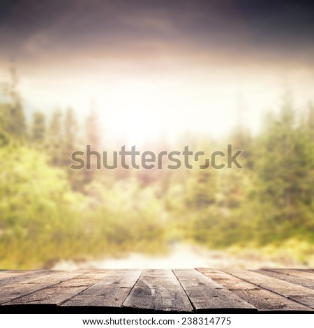 floor of wood and spring morning time  - stock photo