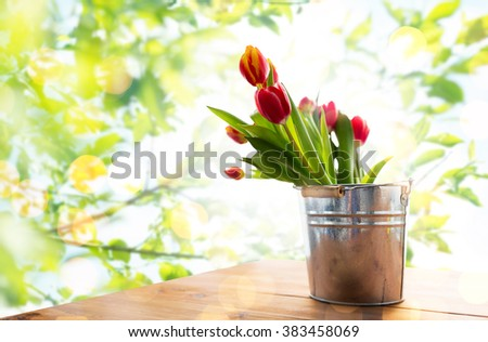 flora, spring, gardening and plant concept - close up of tulip flowers in tin bucket on wooden table over green natural background - stock photo