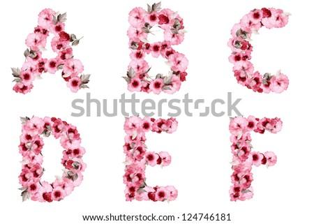 floral alphabet on white background - stock photo
