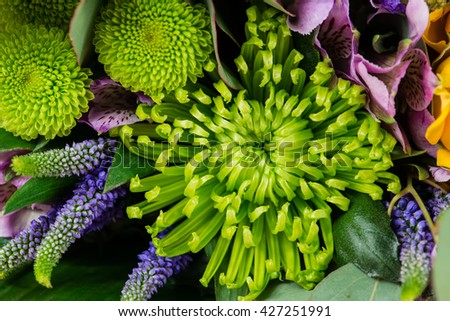 Floral background, green chrysanthemums in a bouquet of flowers. Shallow depth of field - stock photo