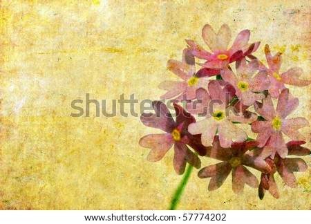 floral background image - stock photo
