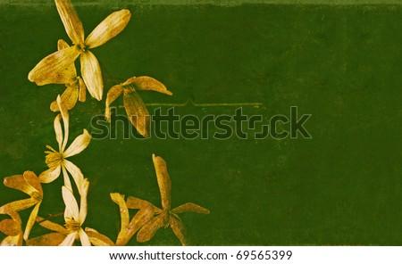 floral background image. useful design element. - stock photo