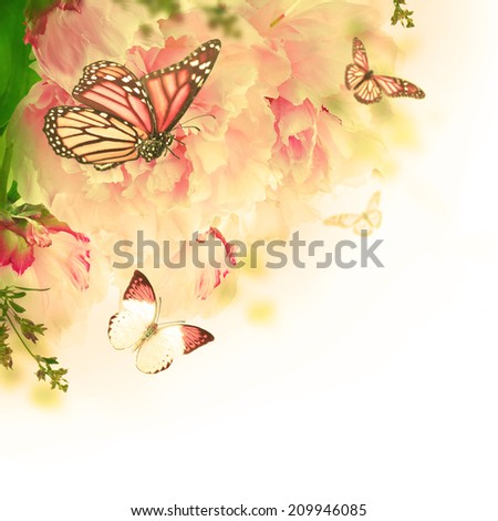 Floral background of roses and butterfly, wild flowers