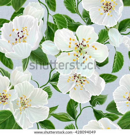 Floral background, pattern, seamless. branch of apple blossoms. Spring flowering. White flowers. - stock photo