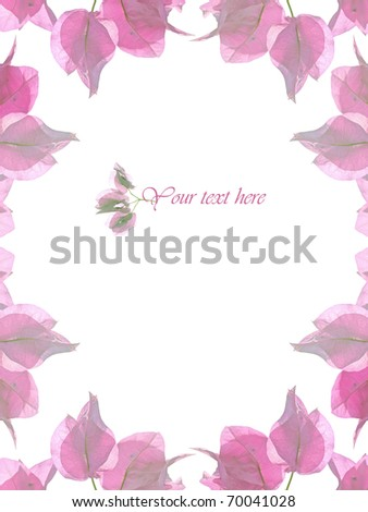 Floral Border Over White Background - stock photo
