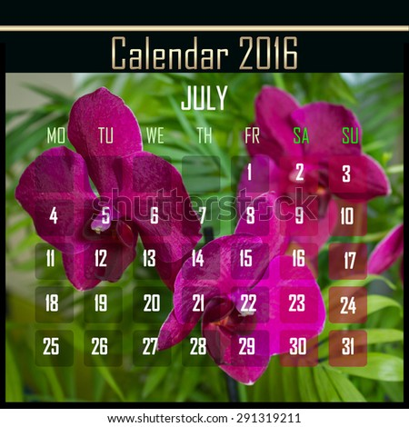 Floral 2016 calendar design for july month - stock photo