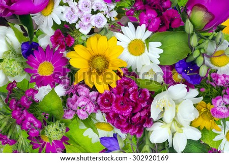 Floral chaos abstract collage from simple June summer flowers background - stock photo