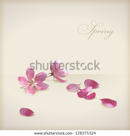Floral cherry blossom flowers spring design. Pink flowers, freshly fallen petals and text 'Spring' on a beige background. Can be used as wedding, greeting, invitation card. Vector file in my portfolio