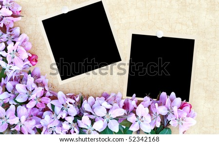 Floral craquelure background with blank photos. Room for your text. - stock photo