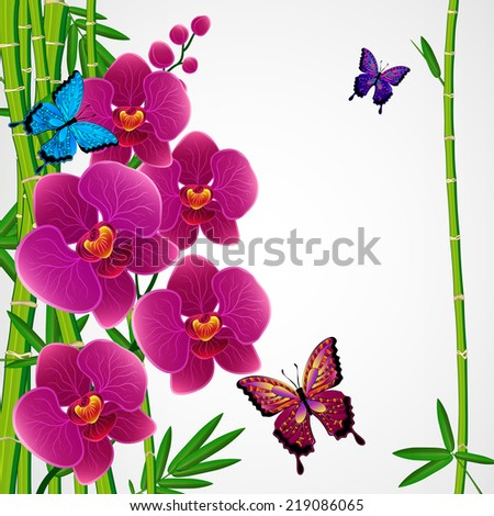 Floral design background. Bamboo and orchids with butterflies. - stock photo