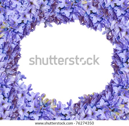 floral frame from hyacinths - stock photo