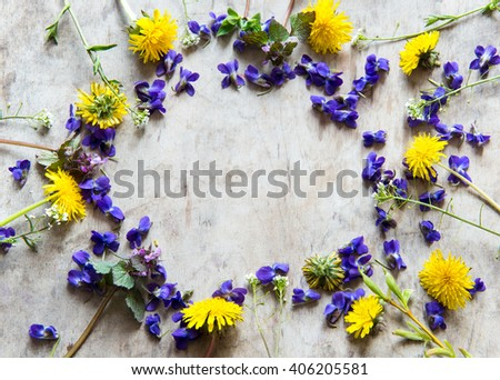 Floral frame with spring flowers - stock photo