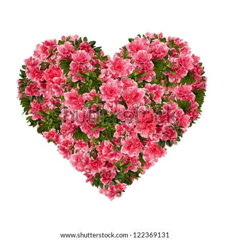 Floral heart with azalea flowers against white. - stock photo