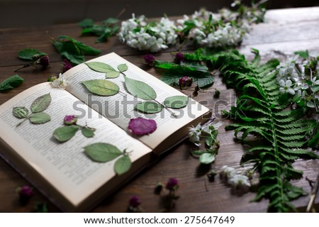 floral mix of fresh cutted, pressed and dried spring flowers and leafs all decorated in rustic style on dark wood background with female hand arranging all soft focus overhead-angle shot - stock photo