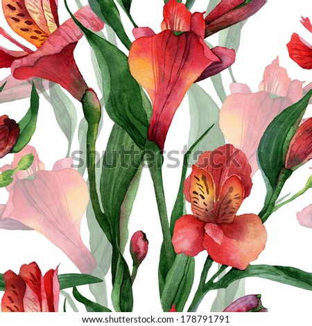 Floral pattern. Watercolor seamless background. Red alstroemeria - stock photo