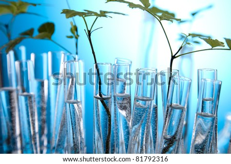 Floral science in  laboratory - stock photo